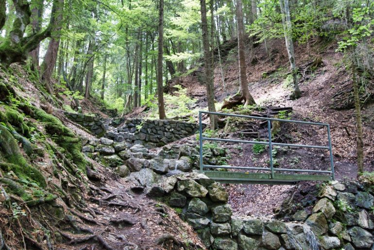 Bachweg zur Buchenbergalm