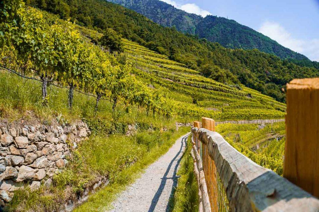 Algunder Waalweg Südtirol