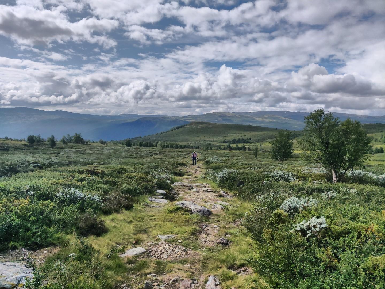 Buchrezension: Abenteuer Olavsweg - von Stefanie Jarantowski - OutdoorGlück